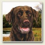 Labrador -chocolate - Stone Coaster-0