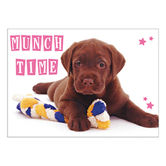 Chocolate Labrador Pet Placemat-0