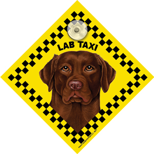 Chocolate Labrador (taxi) Suction Sign-0