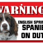 English Springer Spaniel Warning Sign-0