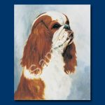 King Charles Spaniel- 6 pack Note Cards--0
