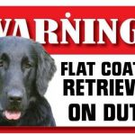 Flat Coat Retriever Warning Sign-0