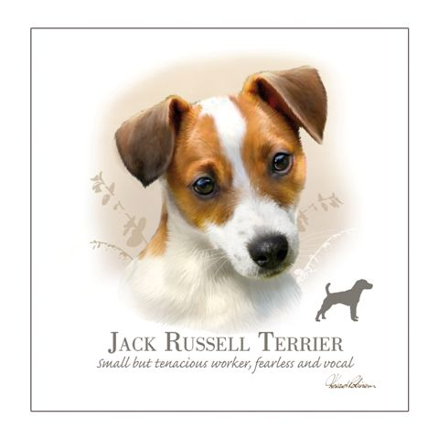 Jack Russell – Blank Card-0