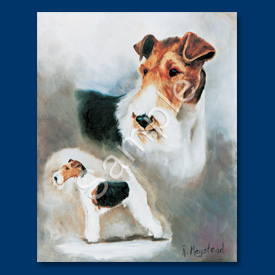 Fox Terrier (Wire)- 6 pack Note Cards-0