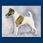 Fox Terrier (Smooth)- 6 pack Note Cards-0
