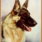 German Shepherd - List Pad & Magnet Combo-0