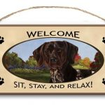 German Shorthaired Pointer – Welcome Hanging Sign-0