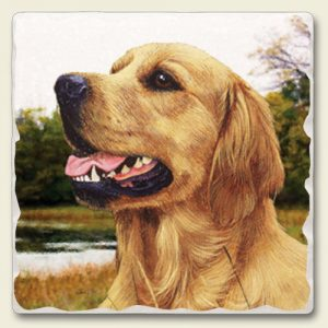 Golden Retriever - Tumbled Stone Magnet-0