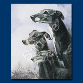 Greyhound & Italian- Note Card-0