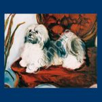Havanese – List Pad and Magnet Combo-0