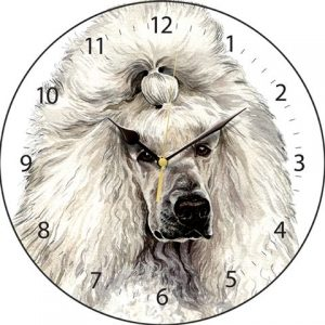 Poodle white - Clock-0