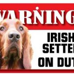 Irish Setter Warning Sign-0