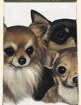 Chihuahua Puppies - 100% Cotton Kitchen Towel-0