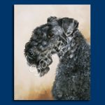 Kerry Blue Terrier - 6 pack Note Cards-0