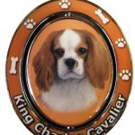 Cavalier King Charles – Spinning Keychain-0