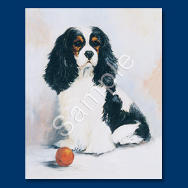 Cavalier King Charles Spaniel- 6 pack Note Cards-0