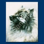 Keeshond – 6 pack Note Cards-0