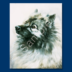 Keeshond - 6 pack Note Cards-0