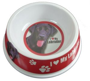 Black Labrador Feeding Bowl-0
