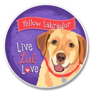 Yellow Labrador - Coaster-0
