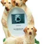 Labrador (yellow) Photo Frame-0