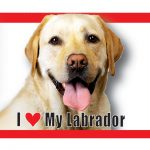 I (heart) my (Yellow) Labrador Magnet-0