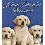Yellow Labrador Puppies - 100% Cotton Kitchen Towel-0