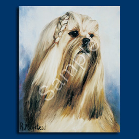 Lhasa Apso- 6 pack Note Cards-0