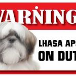 Lhasa Apso Warning Sign-0