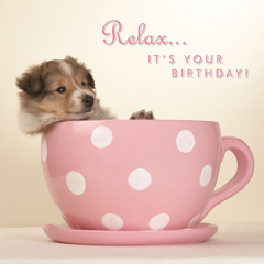 Pup in a Cup - Birthday Card-0