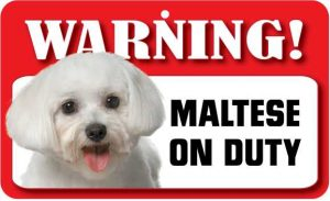 Maltese Warning Sign-0