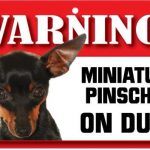 Miniature Pinscher Warning Sign-0