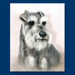 Schnauzer – 6 pack Note Cards-0
