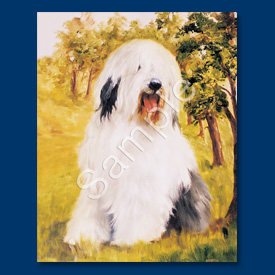 Old English Sheepdog - 6 pack Note Cards-0