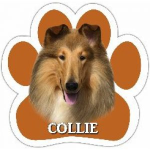 Collie - Paw Print Car Magnet-0