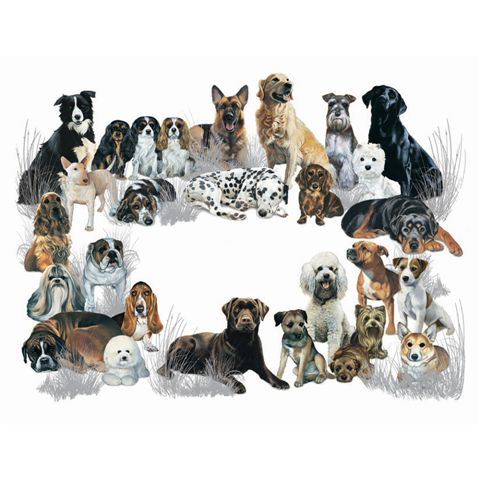 """""""Mixed Dogs Galore"""" Giant Pet Placemat-0"""