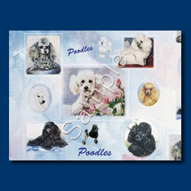 Poodle - Gift Wrap paper-0