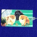 Pomeranian Luggage Bag Tag-0