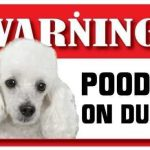 White Poodle Warning Sign-0