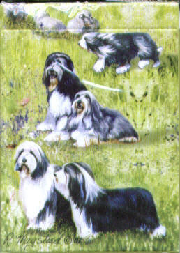 Bearded Collie - Deck of Playing Cards-0