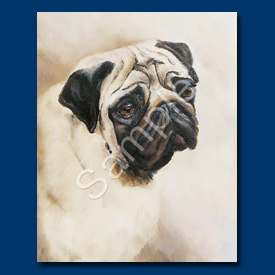 Pug - 6 pack Note Cards-0