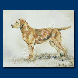 Chesapeake Retriever - 6 pack Note Cards-0