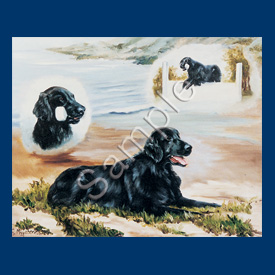 Flat Coated Retriever- 6 pack Note Cards-0