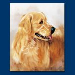 Golden Retriever- 6 pack Note Cards--0