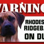 Rhodesian Ridgeback Warning Sign-0