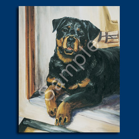 Rottweiler – 6 pack Note Cards-0