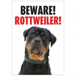 Beware Rottweiler Gate/ Door Sign -0