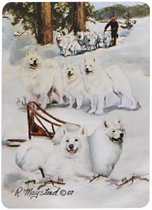 Samoyed- Deck of Playing Cards-0