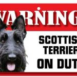 Scottish Terrier Warning Sign-0
