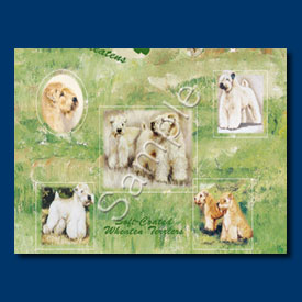 Soft Coated Wheaten Terrier - Gift Wrap paper-0
